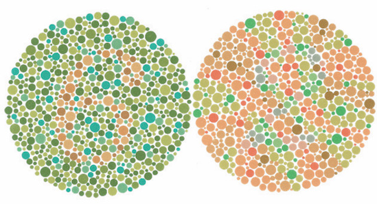 Color Perception: Experiments In the Sciences and The Arts